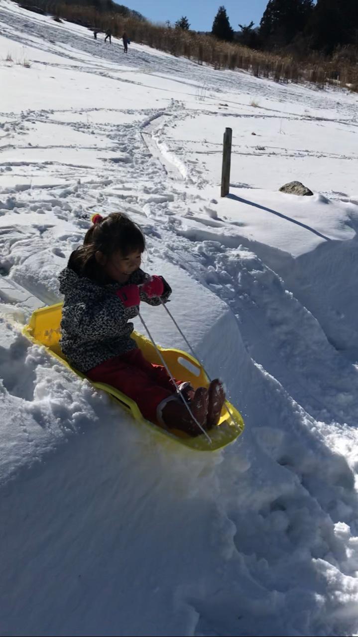 揖斐高原スキー場2020 そり滑り