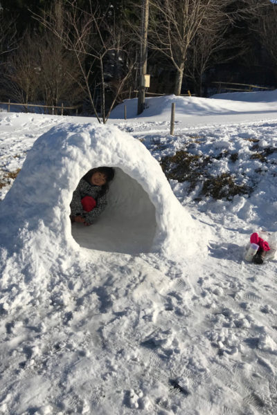 揖斐高原スキー場2020 かまくら 雪